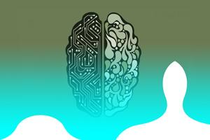مسیر عصبی چیست و چگونگی شکل گیری مسیر عصبی